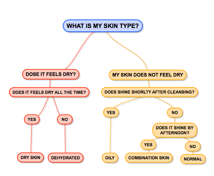 what is your skin type flowchart